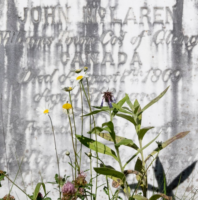 John McLaren, died in 1869, aged 31.