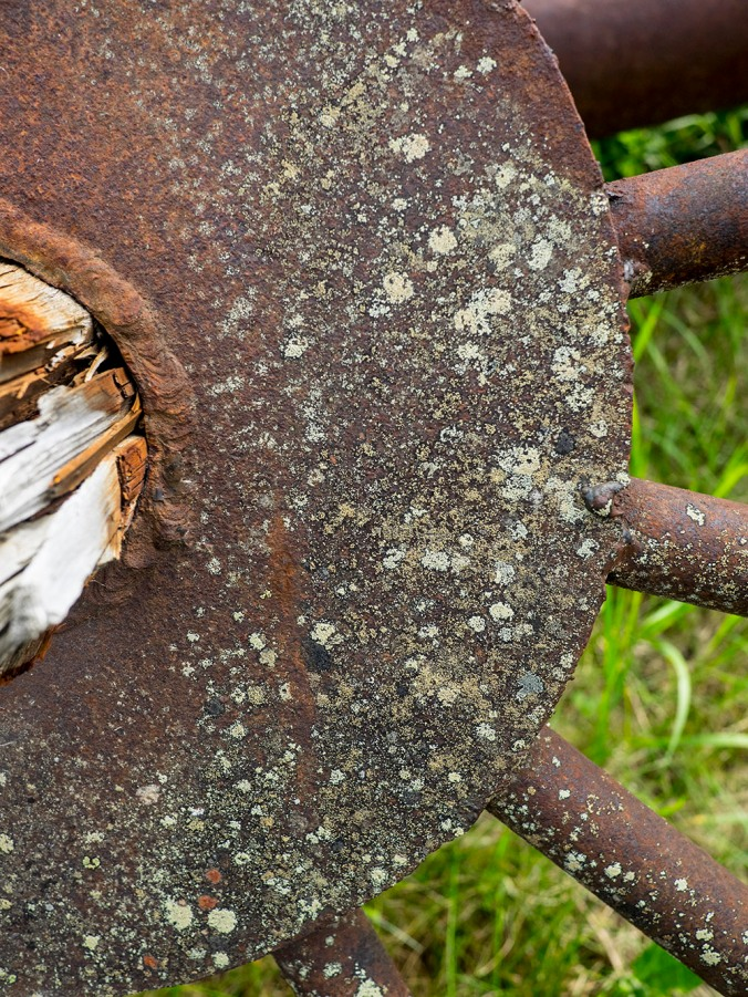 Lichen covered rust wheel at Barkerville