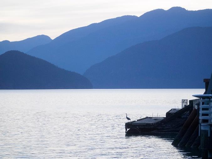 Porteau Cove at twilight, with heron
