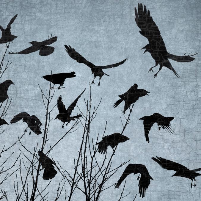 crow dance