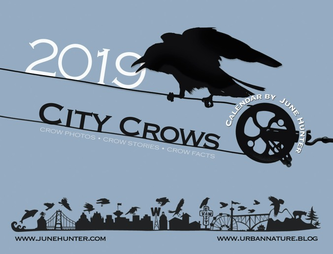 City Crow Calendar cover 2019