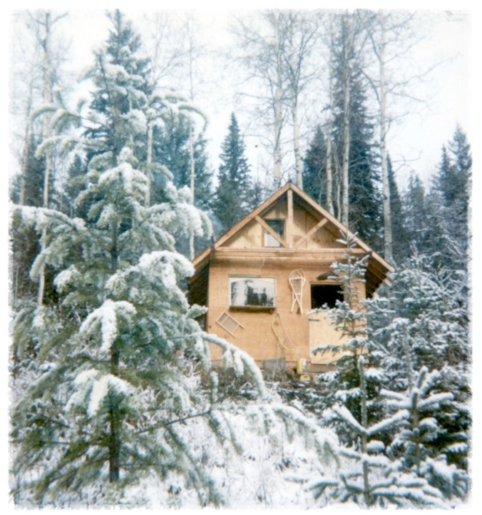 june cabin in winter