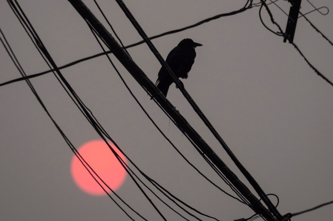 Red Sun, Crow and Wires
