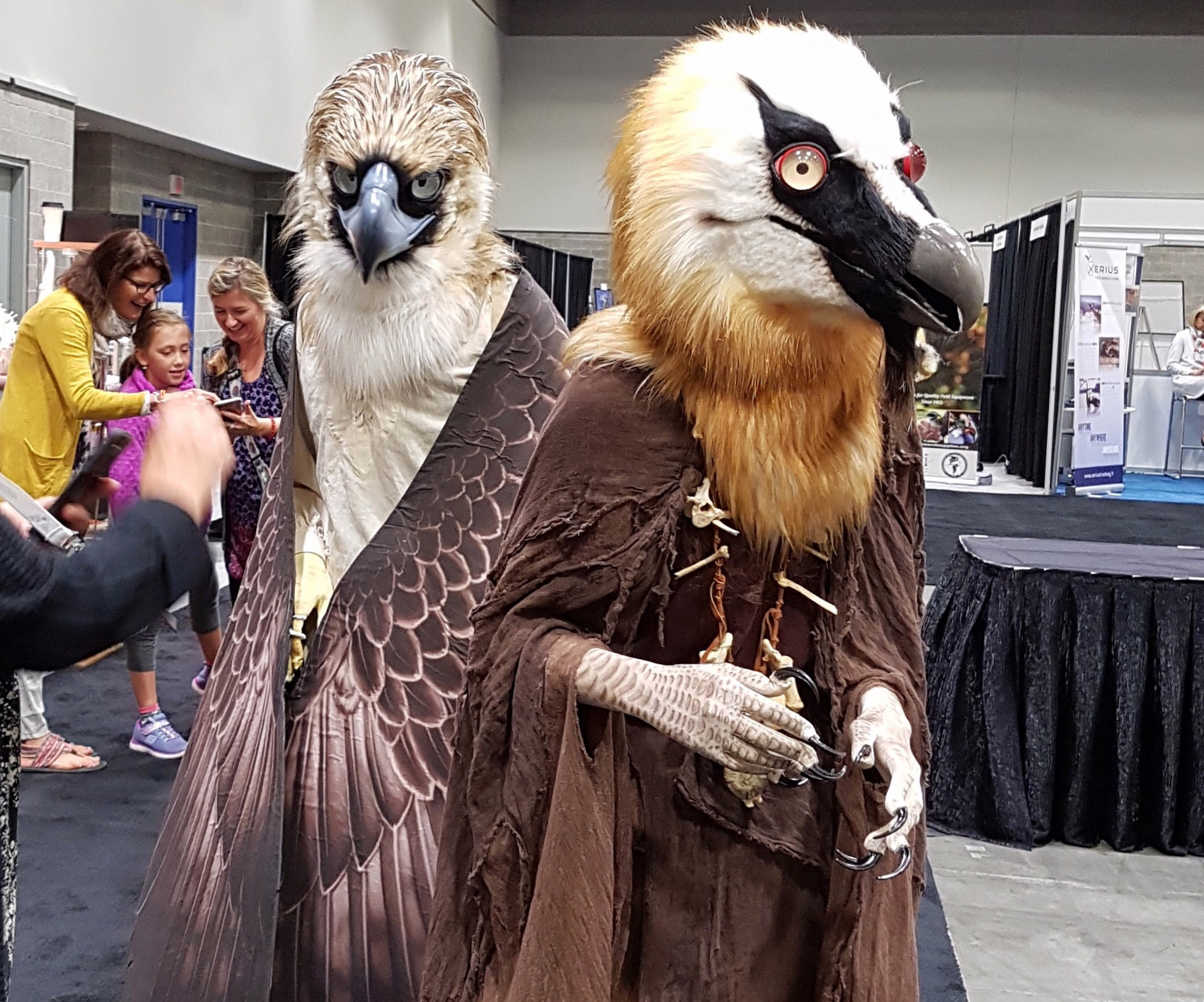 Vulture and Eagle Costumes