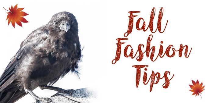 Fall Fashion Tips