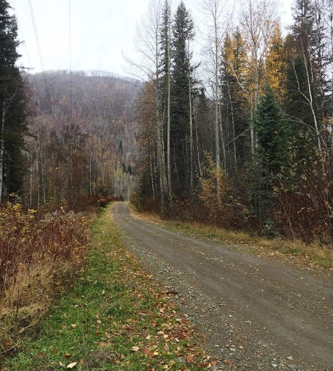 7 mile road