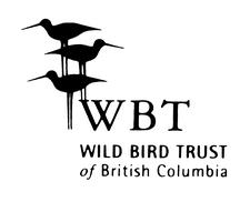 WBT logo